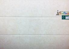 内墙瓷片应用—罗斯福陶瓷